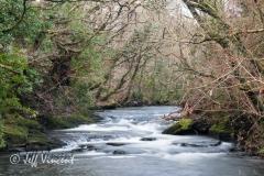 River Dulais above Aberdulais Falls