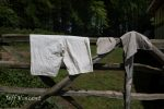 Clothes drying on a gate